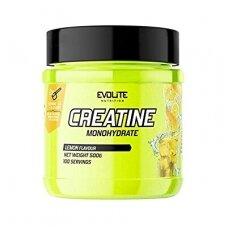 Evolite Creatine Monohydrate 500g